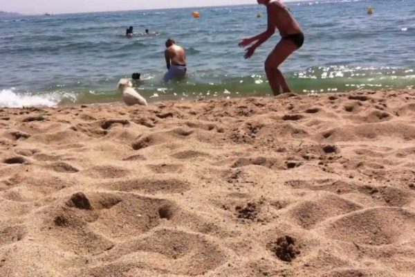 Playa La Rubina para perros en Girona