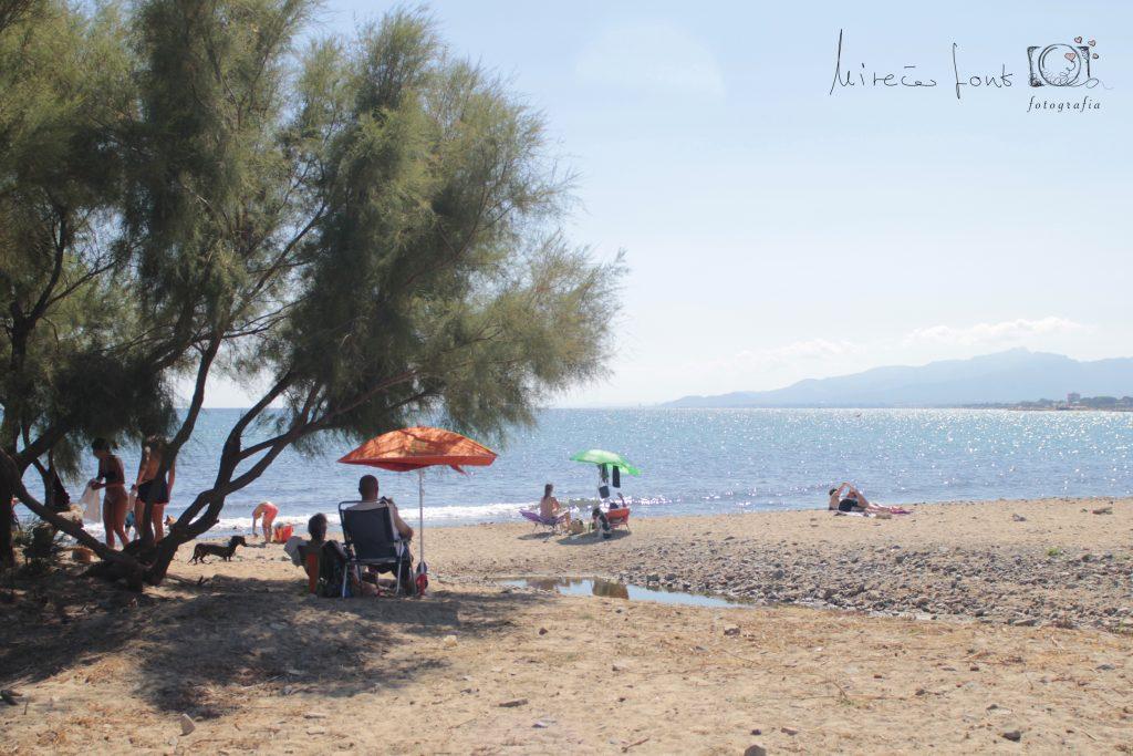 playa canina de Cambrils