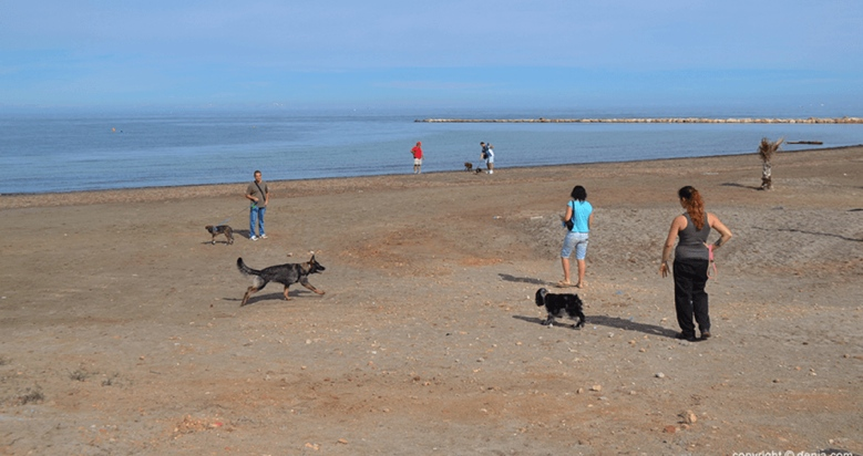 Playa para Perros Escollera Norte en Denia