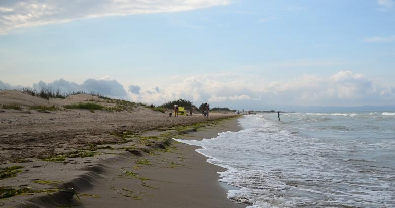 Playa para perros de Riumar en Deltebre