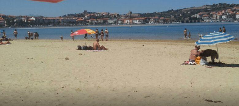 La Maza playa para perros en Cantabria