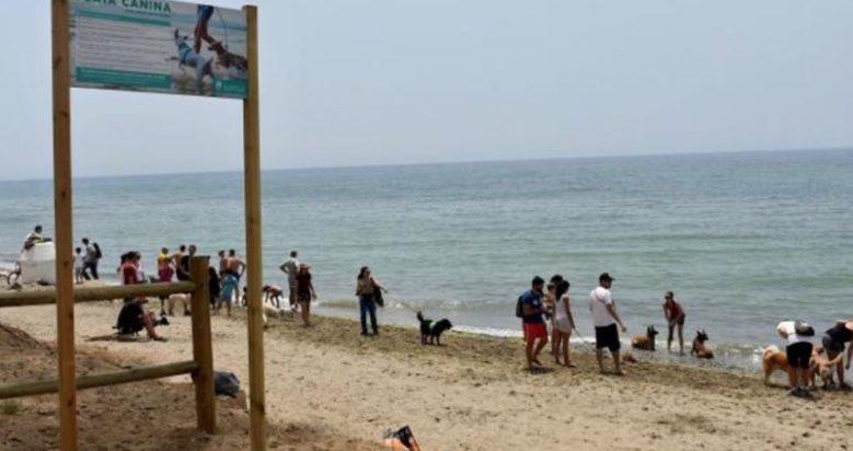 Playa para Perros El Pinillo en Marbella