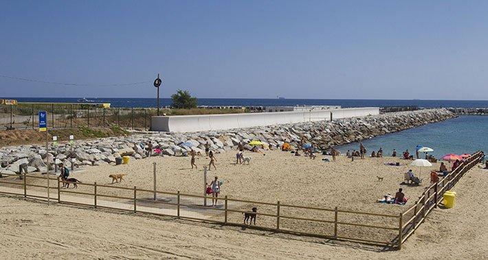 Playa de Llevant para perros en Barcelona