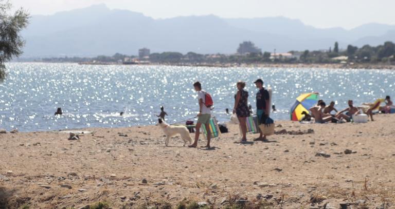 Playa para perros en Cambrils Riera Alforja