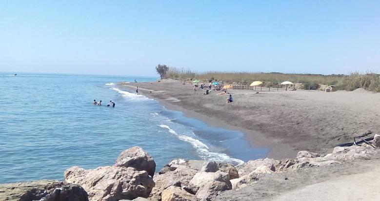 Playa para perros de Torre del mar, en Málaga