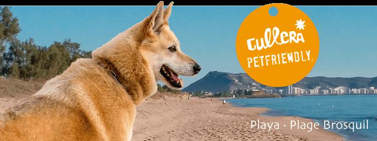 playas para perros en la provincia de Valencia