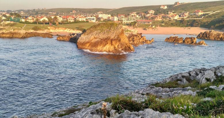 Playas Para Perros En Cantabria Playasparaperros Com